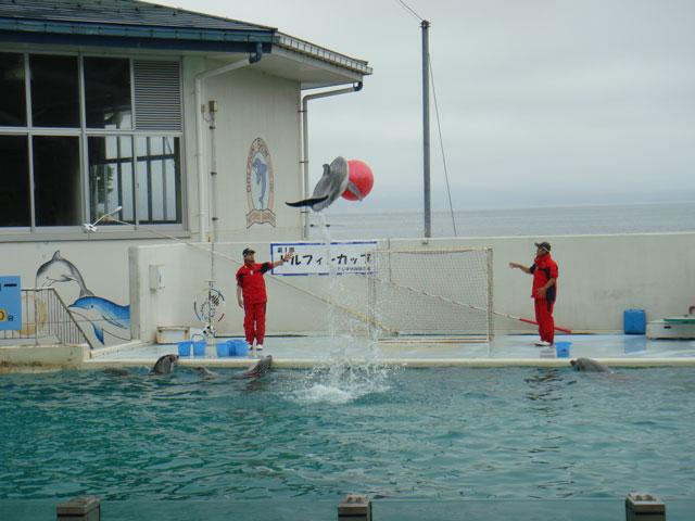 のとじま水族館